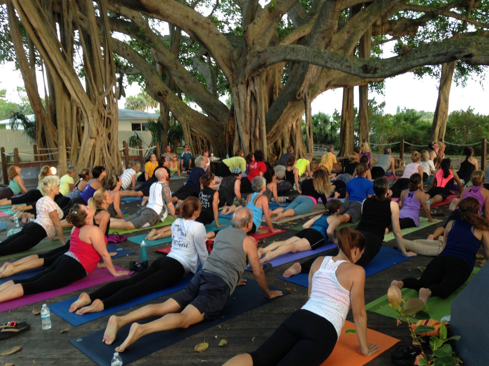 Image result for twilight yoga at jupiter lighthouse